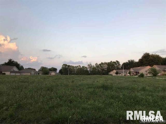 1005 Ravina Drive, Chatham, IL 62629 (#CA1006383) :: Paramount Homes QC