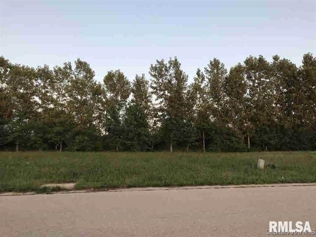 1084 Ravina Drive, Chatham, IL 62629 (#CA1006384) :: Paramount Homes QC