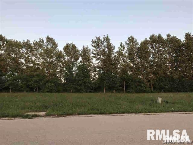 1078 Ravina Drive, Chatham, IL 62629 (#CA1006385) :: Paramount Homes QC