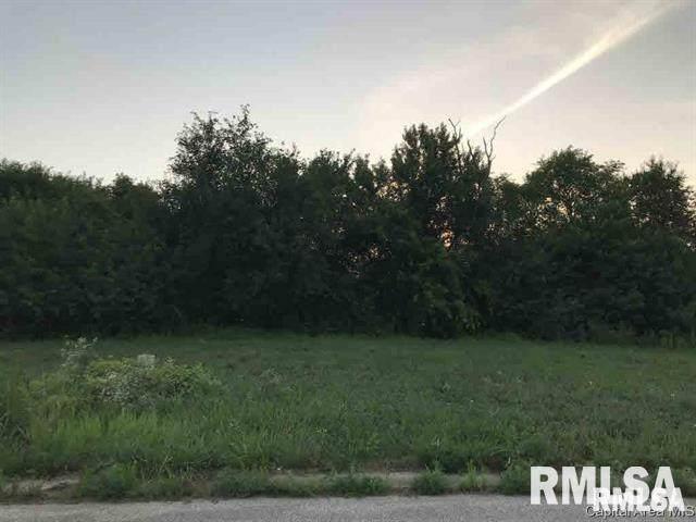 1036 Ravina Drive, Chatham, IL 62629 (#CA1006386) :: Paramount Homes QC