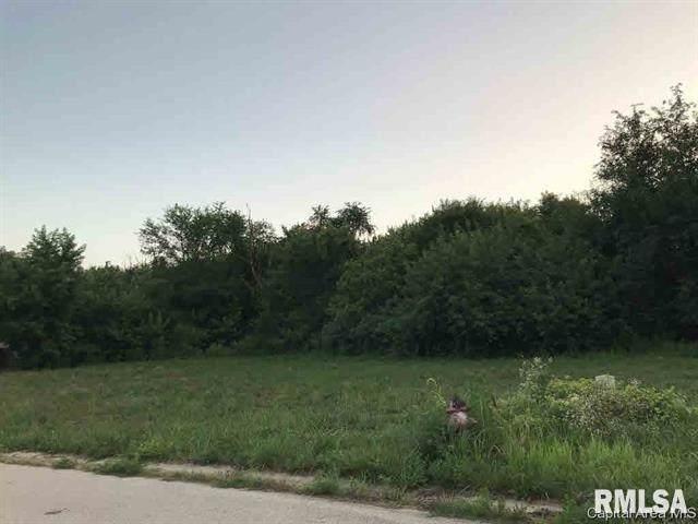 1030 Ravina Drive, Chatham, IL 62629 (#CA1006387) :: Paramount Homes QC