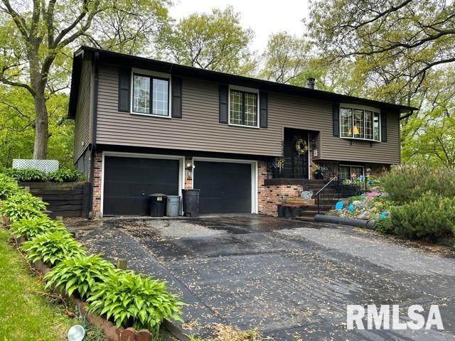 9545 Rock River View View, COLONA, IL 61254 (#QC4221435) :: RE/MAX Professionals