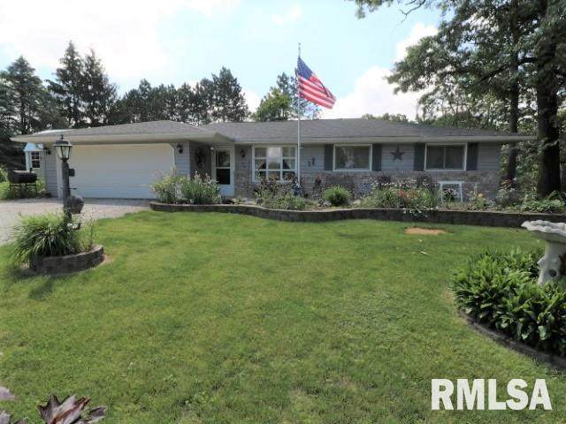 90 Hopewell Drive, Sparland, IL 61565 (#PA1225742) :: RE/MAX Professionals