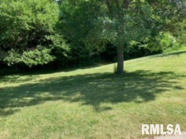 Lot 14 Berry Drive, Port Byron, IL 61275 (#QC4222886) :: Paramount Homes QC