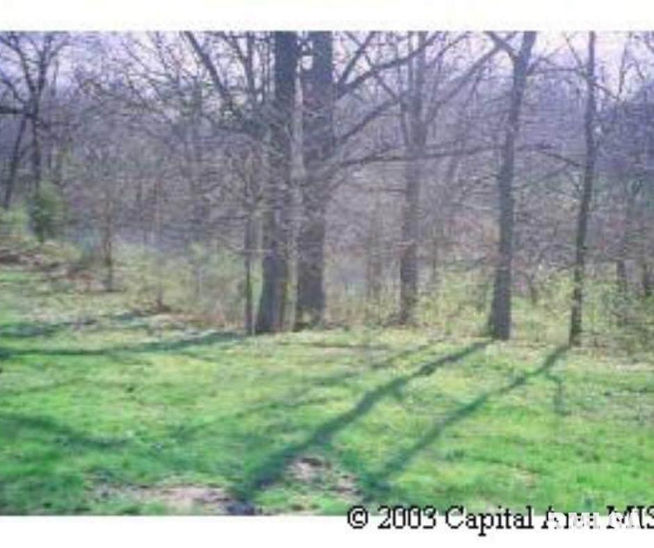 27 Bluff Circle - Photo 1