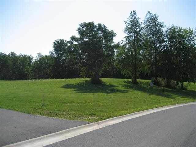3917 N 229TH Street Circle North, Port Byron, IL 61275 (#QC4225883) :: Paramount Homes QC