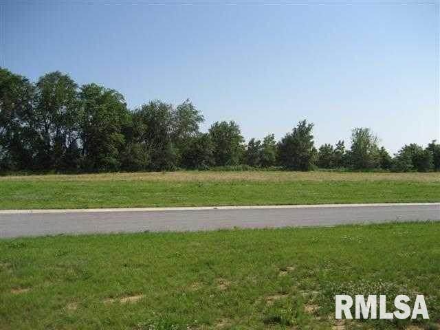 3905 229TH Street Circle, Port Byron, IL 61275 (#QC4225893) :: RE/MAX Preferred Choice