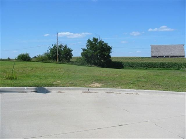 1008 2ND Street Court West, Orion, IL 61273 (#QC4185668) :: Nikki Sailor | RE/MAX River Cities