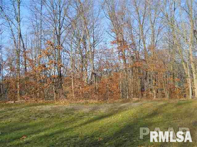 205-Lot 37 Greenview Drive, East Peoria, IL 61611 (#PA1140556) :: RE/MAX Preferred Choice