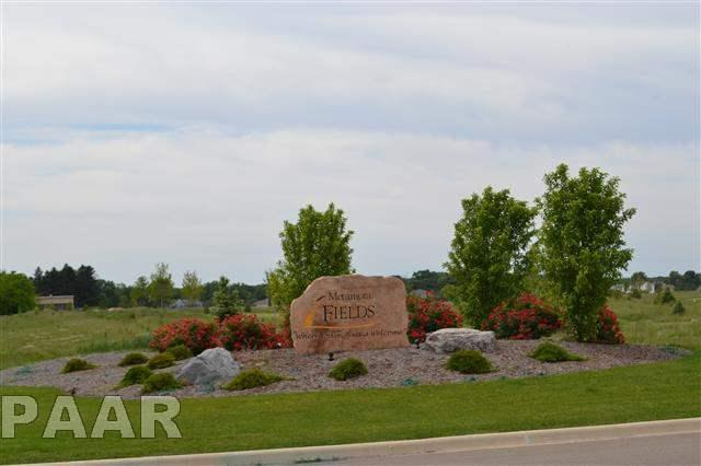 Lot 36 Brinkman Way, Metamora, IL 61548 (#1141394) :: Adam Merrick Real Estate