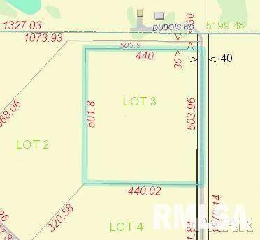 Lot 3 N Dubois Road, Brimfield, IL 61517 (#PA1153372) :: Adam Merrick Real Estate