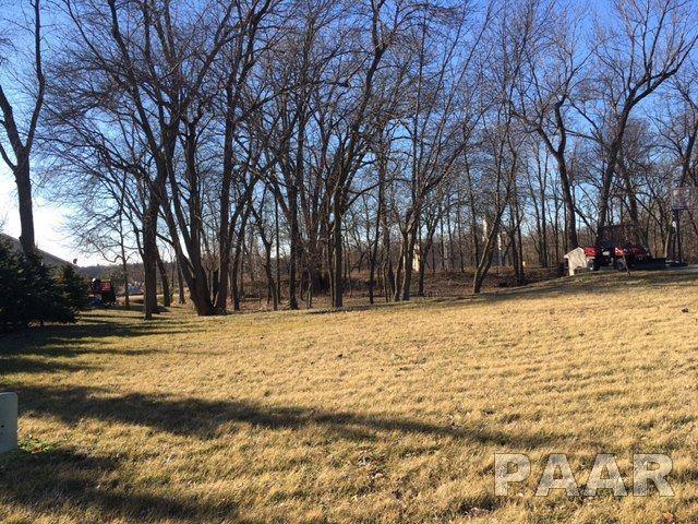204 Park Trail Road, Mackinaw, IL 61755 (#PA1173644) :: The Bryson Smith Team