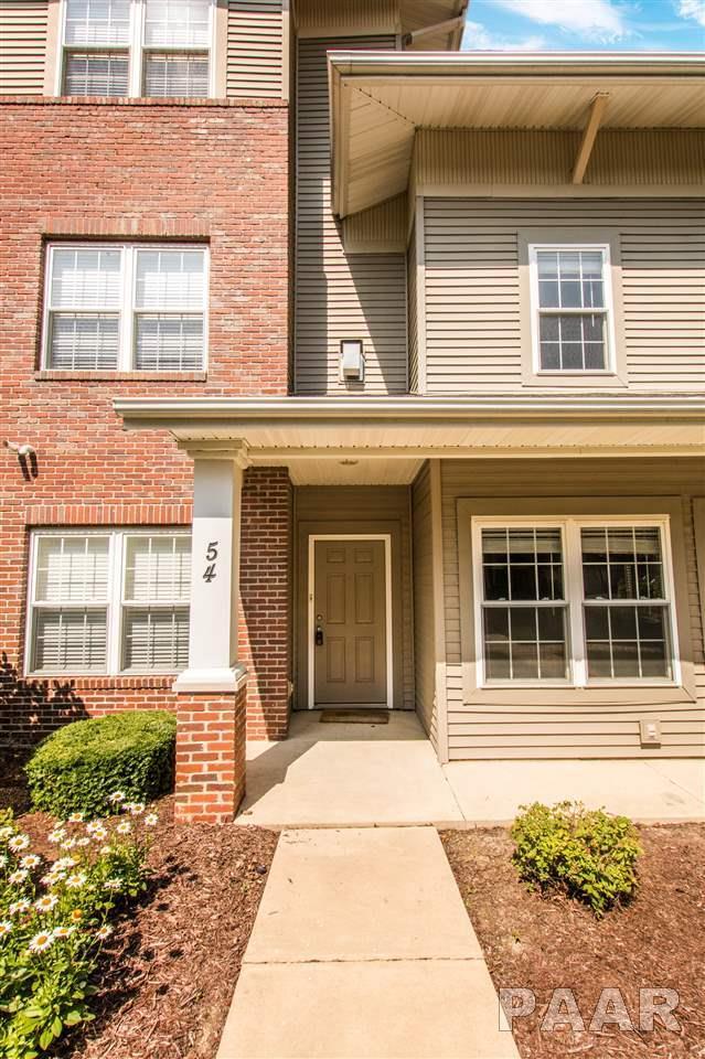 11217 N Oakwood Drive #54, Peoria, IL 61615 (#1181888) :: Adam Merrick Real Estate