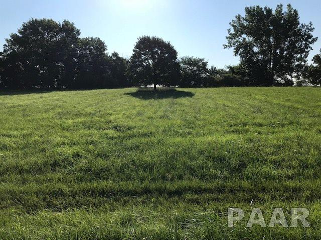 62 Lake Wildwood Drive, Varna, IL 61375 (#PA1196462) :: Adam Merrick Real Estate