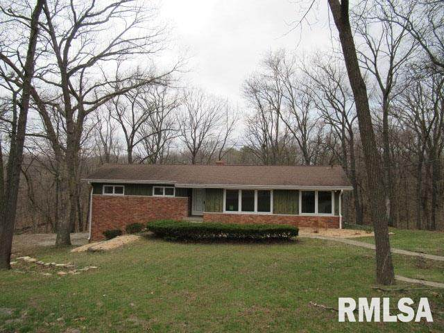 248 E Greenbrier Drive, East Peoria, IL 61611 (#PA1213905) :: Adam Merrick Real Estate