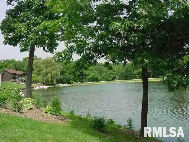 LOT 49 Rustic Lake Estates, COLONA, IL 61241 (#QC4223271) :: RE/MAX Preferred Choice