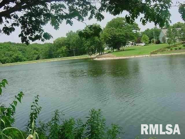 63 Rustic Lake Estates, COLONA, IL 61241 (#QC4188206) :: Killebrew - Real Estate Group