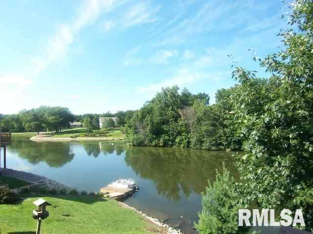 71 Rustic Lake Estates, COLONA, IL 61241 (#QC4188213) :: Killebrew - Real Estate Group