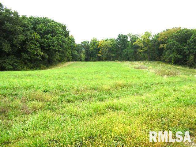 Lot 20 58TH Street, New Boston, IL 61272 (#QC4194720) :: The Bryson Smith Team