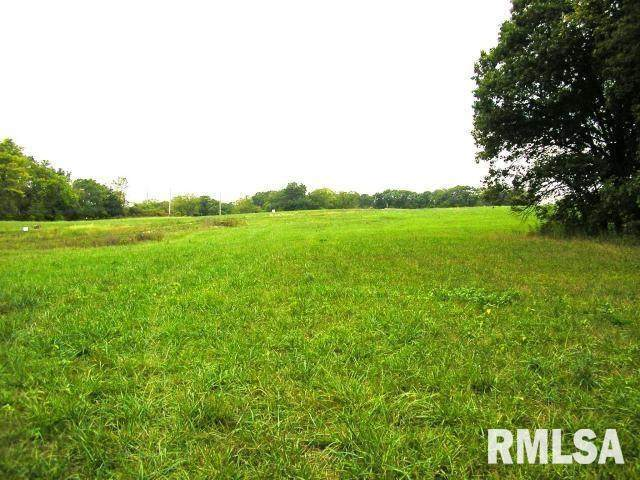 Lot 13 58TH Street, New Boston, IL 61272 (#QC4194723) :: The Bryson Smith Team