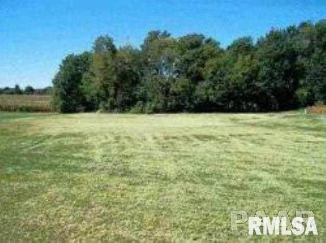 Lot 17 Eagle Drive, Lacon, IL 61540 (#PA1169783) :: RE/MAX Preferred Choice