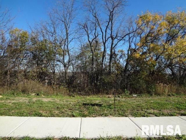 11422 N Boulder Creek Court, Dunlap, IL 61525 (#PA1178809) :: Nikki Sailor | RE/MAX River Cities