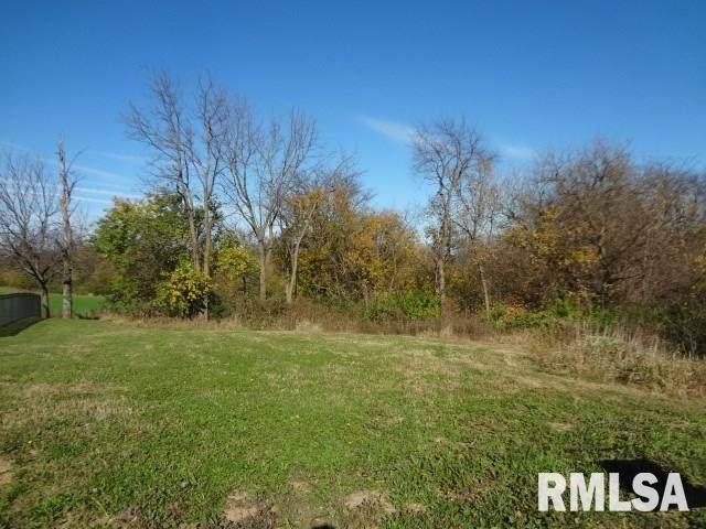 11434 N Boulder Creek Court, Dunlap, IL 61525 (#PA1178810) :: Nikki Sailor | RE/MAX River Cities
