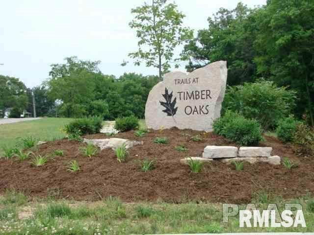 LOT 110 Turtle Creek Trail, Morton, IL 61550 (#PA1181171) :: Killebrew - Real Estate Group