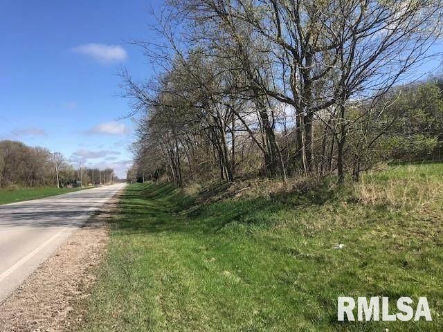 11919 Route 84 N, Port Byron, IL 61275 (#QC4220477) :: Nikki Sailor | RE/MAX River Cities