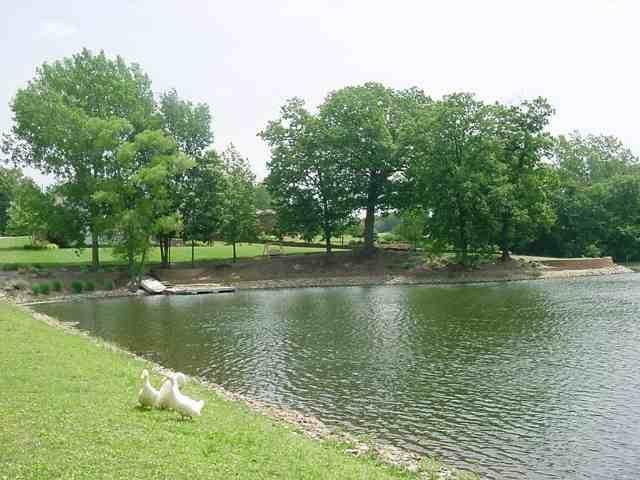 65 Rustic Lake Estates, COLONA, IL 61241 (#QC4188208) :: RE/MAX Preferred Choice