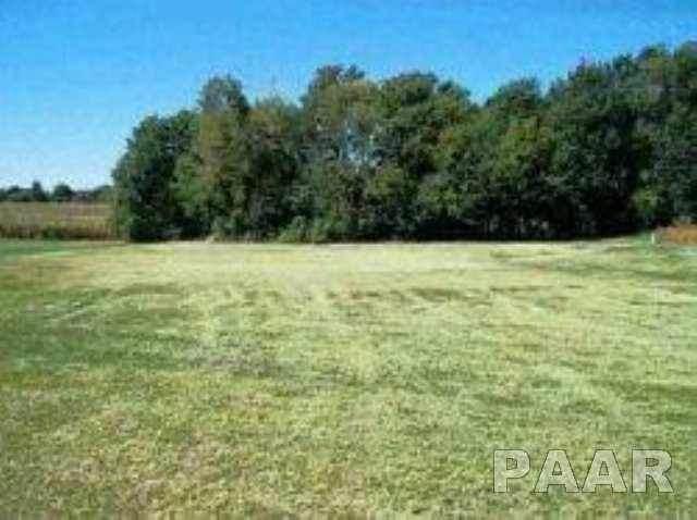 Lot 12 Eagle Drive, Lacon, IL 61540 (#PA1169777) :: RE/MAX Preferred Choice