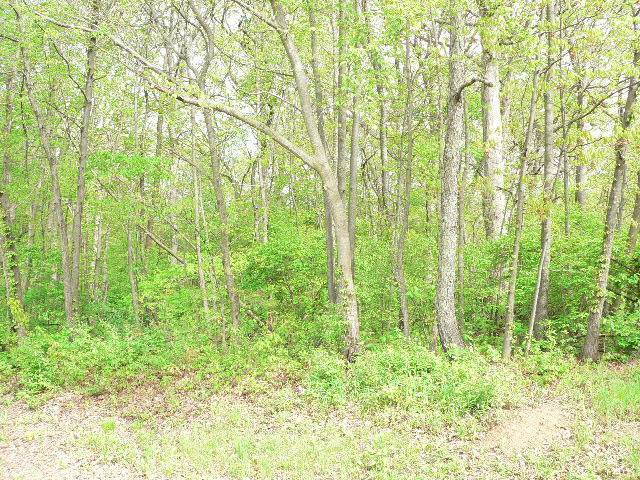 505 Running Bear Court, Sparland, IL 61565 (#PA1174547) :: RE/MAX Preferred Choice