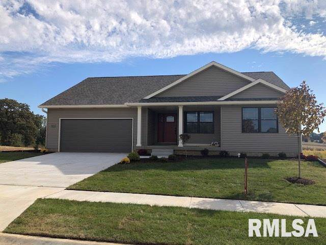 621 Rock Point Road, COLONA, IL 61241 (#QC4205388) :: Adam Merrick Real Estate