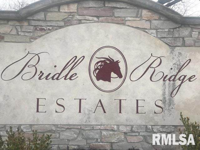 27 Stallion Way, Goodfield, IL 61742 (#PA1194146) :: Killebrew - Real Estate Group