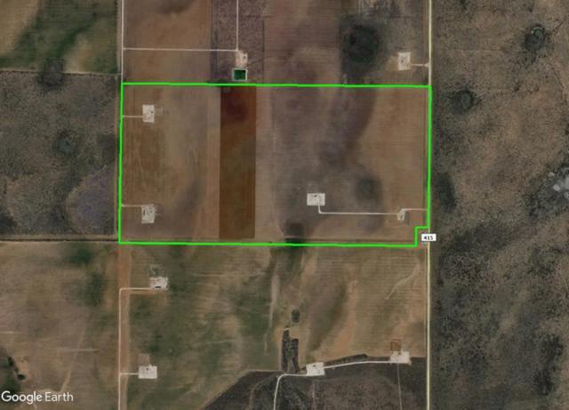 N County Rd 415, Garden City, TX 79739 (MLS #50017410) :: Rafter Cross Realty