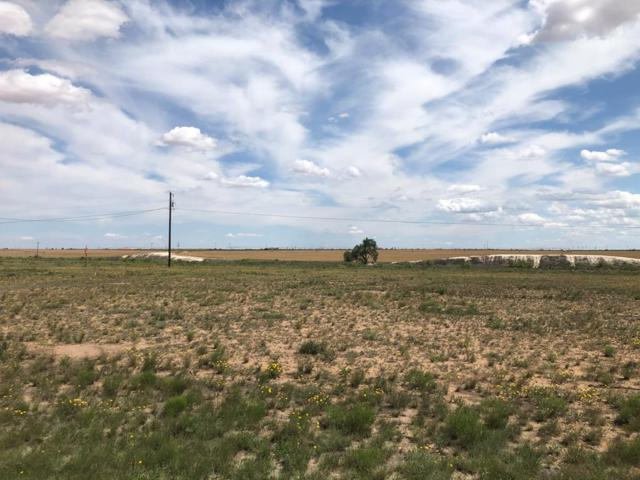 Lot 16 Private Rd 300A, Seminole, TX 79360 (MLS #50039646) :: Rafter Cross Realty