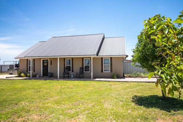 447 County Rd 304, Seminole, TX 79360 (MLS #50039657) :: Rafter Cross Realty