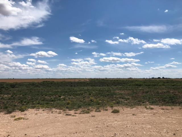 Lot 3 Private Rd 300A, Seminole, TX 79360 (MLS #50039763) :: Rafter Cross Realty
