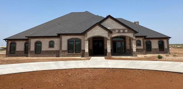 3501 Black Wolf Trail, Midland, TX 79706 (MLS #50040139) :: Rafter Cross Realty
