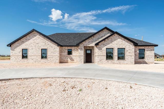 280 County Rd 304-E, Seminole, TX 79360 (MLS #50042099) :: Rafter Cross Realty