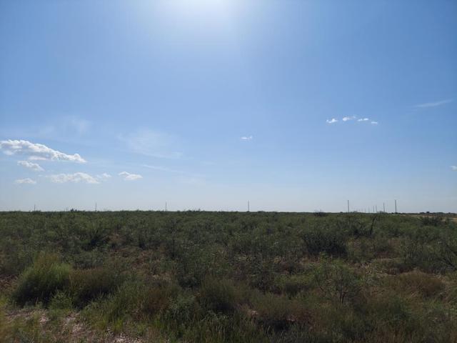 TBD Private Rd 306K, Seminole, TX 79360 (MLS #50042274) :: Rafter Cross Realty