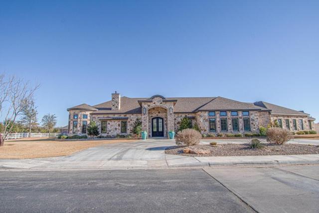 6007 Dunbarton Oaks Blvd, Midland, TX 79705 (MLS #50042579) :: Rafter Cross Realty