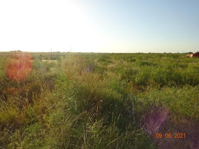 TBD Blk A21, Seminole, TX 79360 (MLS #50043064) :: Rafter Cross Realty
