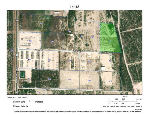863 S Hwy 137, Big Lake, TX 76932 (MLS #50043079) :: Rafter Cross Realty