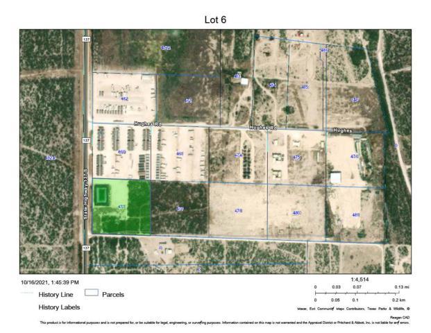 863 S Hwy 137, Big Lake, TX 76932 (MLS #50043082) :: Rafter Cross Realty