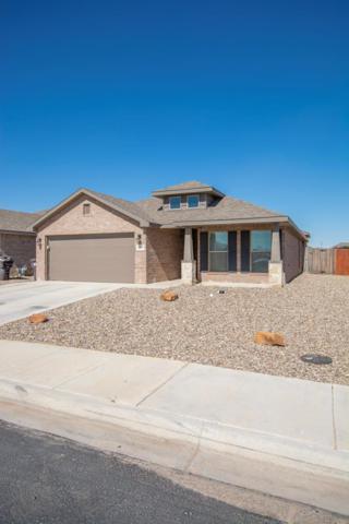1707 Wrangler Lane, Midland, TX 79705 (MLS #50043286) :: Rafter Cross Realty