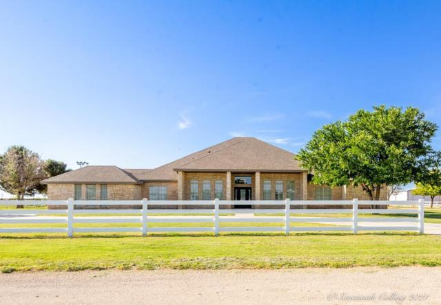 7310 County Rd 46, Midland, TX 79707 (MLS #50039281) :: Rafter Cross Realty
