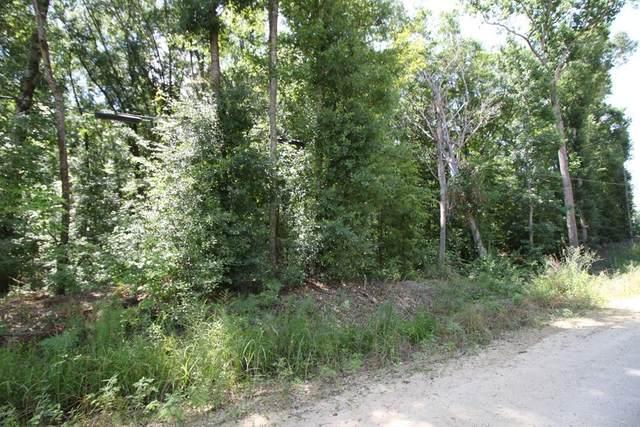10 Lakeview Drive, COTTONTON, AL 36851 (MLS #68739) :: Haley Adams Team