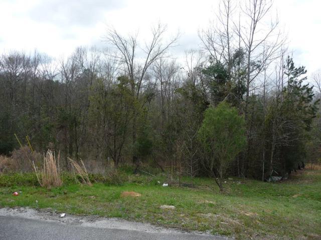 Lot 109 Isaac Dr, PHENIX CITY, AL 36867 (MLS #70450) :: Bickerstaff Parham