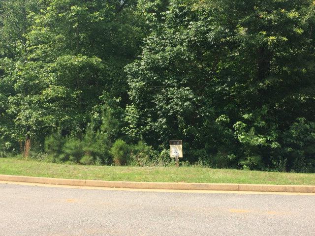 1607 Grist Mill Isle, PHENIX CITY, AL 36867 (MLS #66227) :: Matt Sleadd REALTOR®